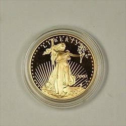 2002 American  Eagle AGE $50 Near Perfect 1ozt of .999