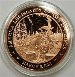 Bronze Proof Medal America Legislates to Save Its Trees March 3 1891