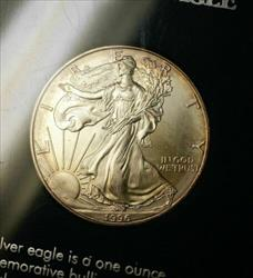 1996 American  Eagle ASE Brilliant Uncirculated  1 Ozt 999 SSCA Case