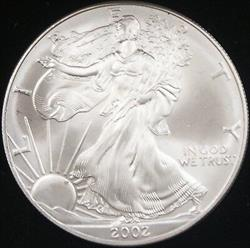 2002 American  Eagle ASE BU in Deluxe Case