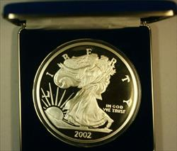 2002 Washington Mint 1/2 LB 8oz Pure  Proof  Eagle  Round