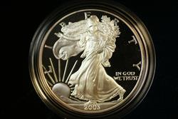 2003 W Proof American  Eagle S$1 1 Oz Troy .999 Fine With COA & OGP