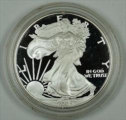 2005 Proof American Eagle    1 Troy Oz .999 Fine