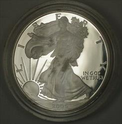 2005 W American Proof  Eagle  No Box or COA