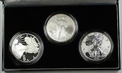 2006 American  Eagle 20th Anniversary  Set BU Proof Reverse Proof