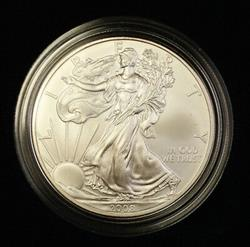2008 American  Eagle ASE BU in Deluxe Case