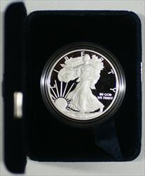 2008 W  Eagle $1 Proof  with Case US Mint *No Box No COA*