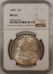 1880 $1 Morgan    NGC Toned (13A)