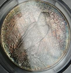 1922 D Peace   $1 PCGS Beautifully Toned DGH