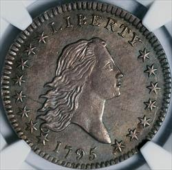 1795 2-Leaves Flowing Hair Half Dollar -- NGC MS62